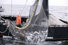 fishernmen
